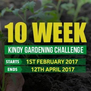 10 week Kindy Gardening Challenge