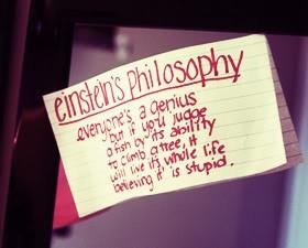 228733043-philosophyquotes